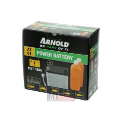 Batteri Arnold Trägård, AZ 61